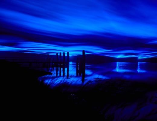 Waterlichtroosegaarde2