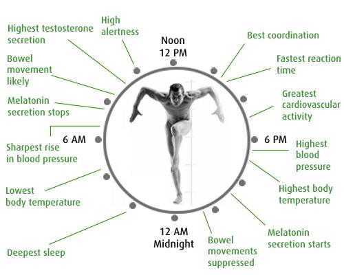biologische-klok-en-slaapproblemen